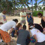 Florida Beach Team Building