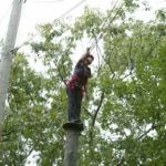 New Haven Ropes Courses