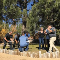 Teamwork Collaboration Skills
