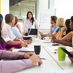 MBTI Team Building Meetings